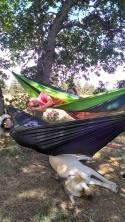 Sleeping under the hammocks.